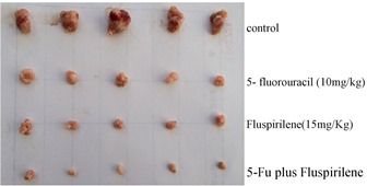 Figure 2: in vivo effect of fluspirilene on the HCC tumor weight and volume in groups of five nude mice subcutaneously injected with Huh7 cells. This figure is modified from a published figure of the above-cited PLoS ONE journal paper, which is licensed under the Creative Commons Attribution (CC BY) license (http://creativecommons.org/licenses/by/4.0/).