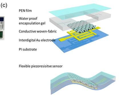 Figure 1c: Schematic of the piezoresistive sensor