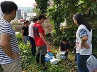 Collecting samples at a river in Taipo for experiments (Photo Credit: Miss Lian Xianyi, China Agricultural University)