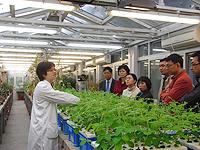 代表團參觀農業生物技術國家重點實驗室(中大)