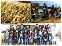 學習古代農家編結草繩
